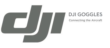 Logo DJI Goggles Immersive FPV